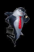 requin-min